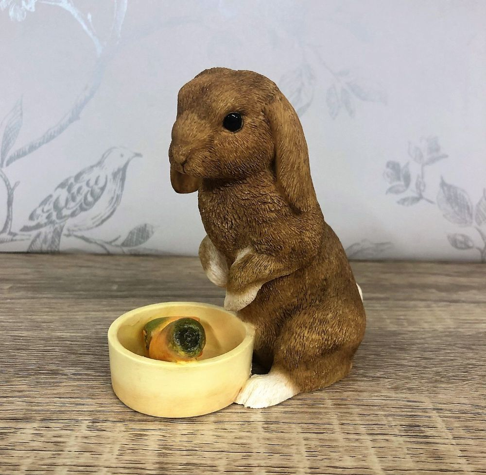 Brown Rabbit with White Paws and Bowl